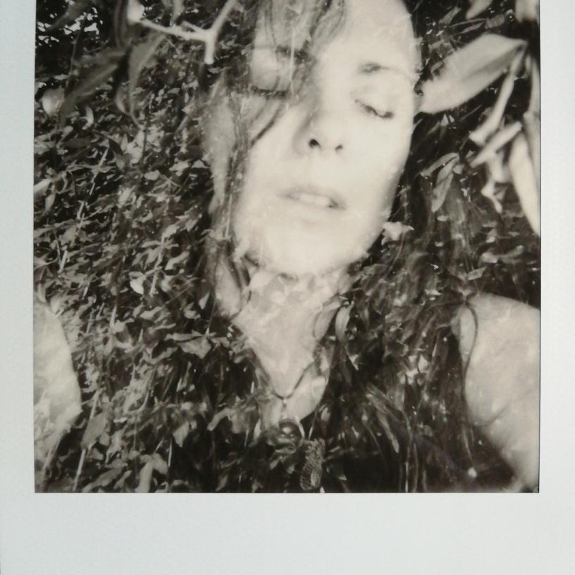 (Polaroid double exposition)