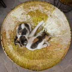 Marrakech souk 01b